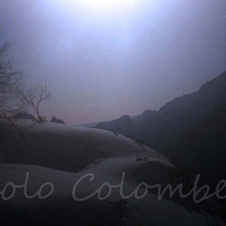 Larice sotto la luna nei piani eterni