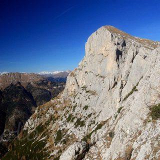 Monte alto Pelsa
